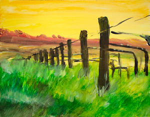 Sunset Napa Vineyard